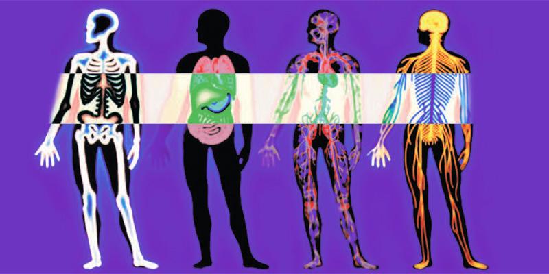 Sintomas Iniciales Del Cancer